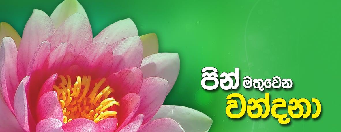 පින් මතුවෙන වන්දනා - Mahamevnawa Buddhist